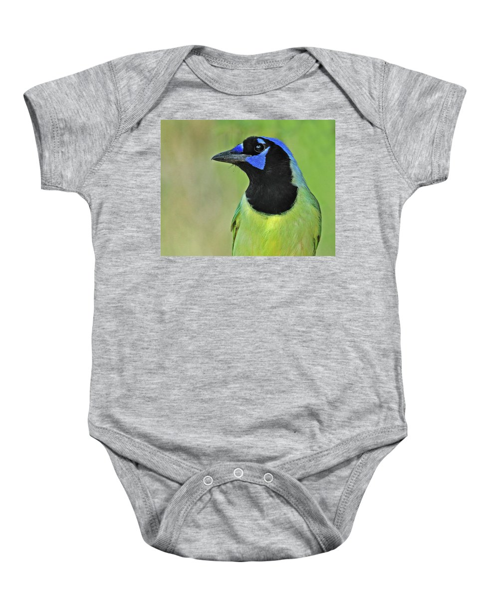 Green Jay Baby Onesie featuring the photograph Green Jay Portrait by Dave Mills