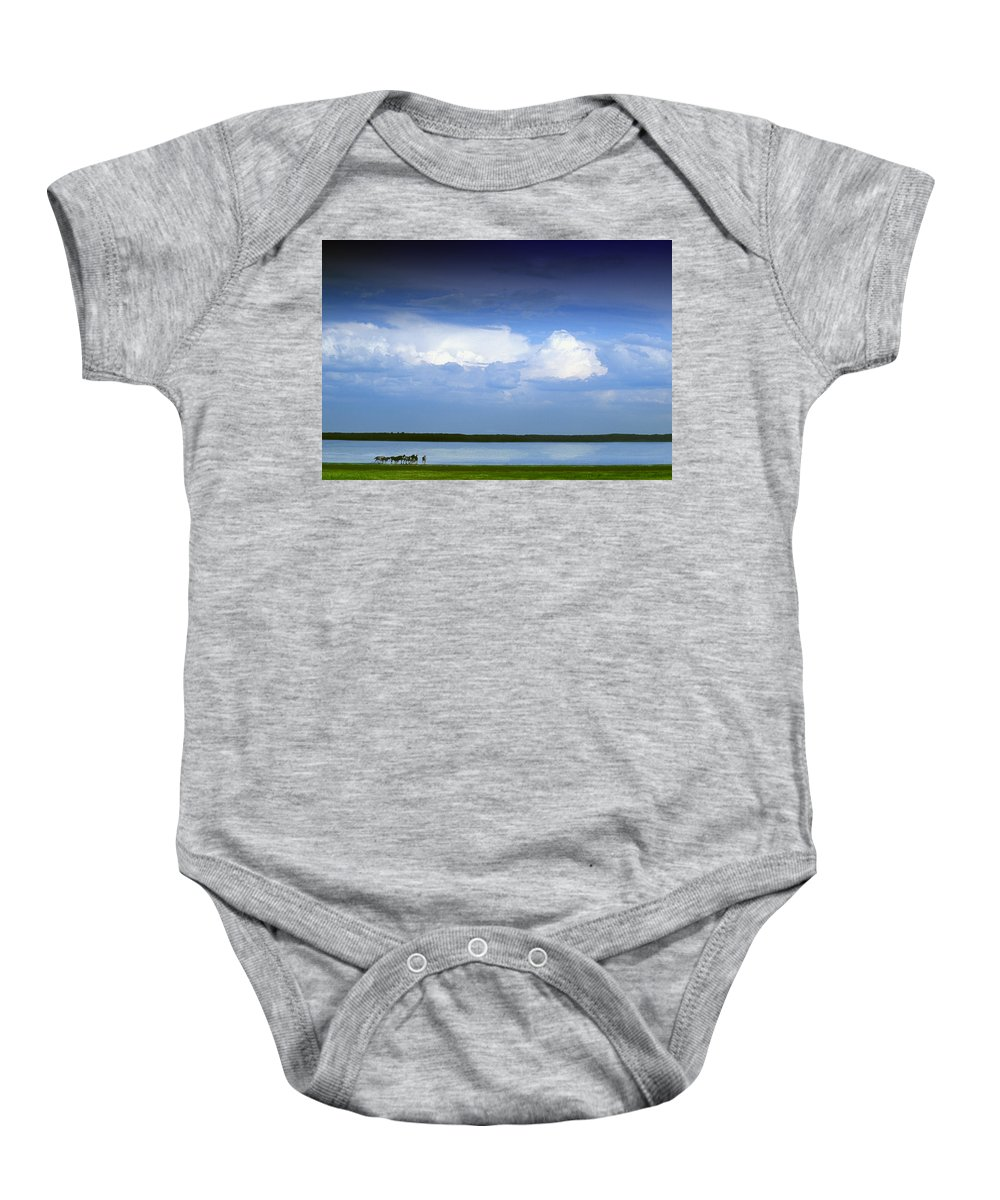 Prairie Baby Onesie featuring the photograph Horses By Lake On Overcast Day by Darren Greenwood