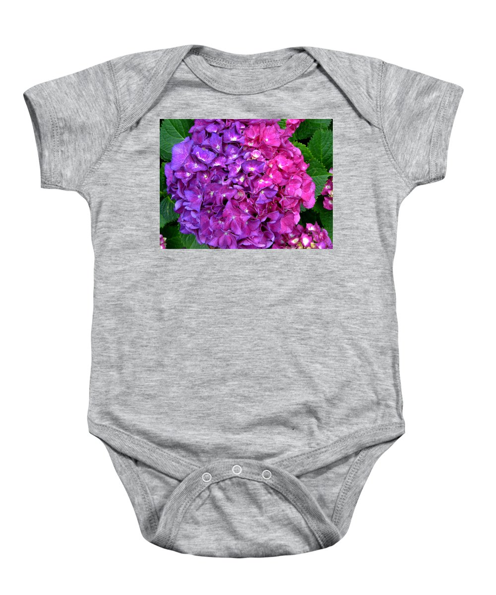 Hydrangea Baby Onesie featuring the photograph Hydrangea by Denise Keegan Frawley