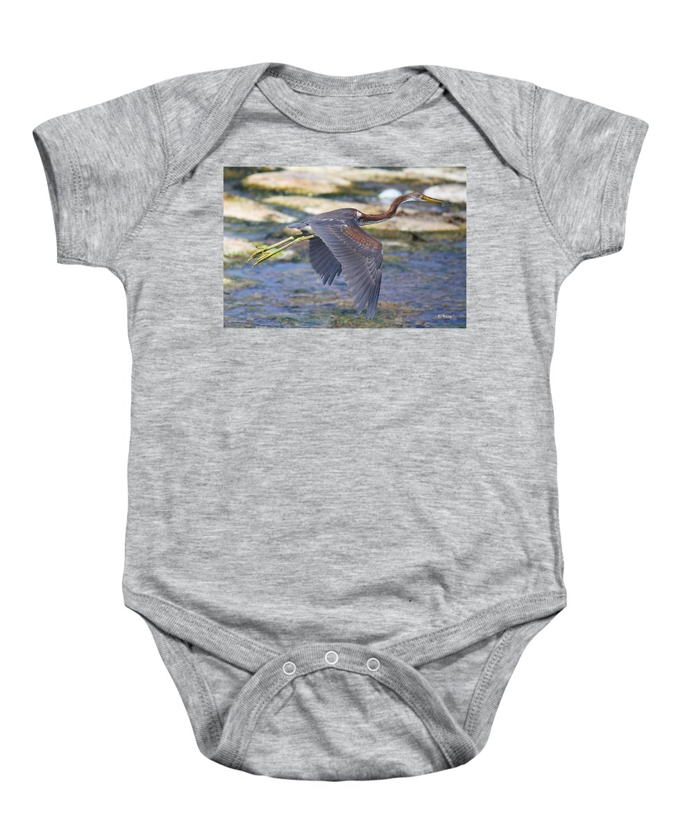 Roena King Baby Onesie featuring the photograph Immature Tricolored Heron Flying by Roena King