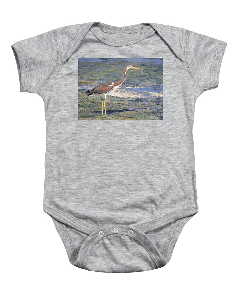 Tricolored Heron Baby Onesie featuring the photograph Immature Tricolored Heron Standing At High Tide by Roena King