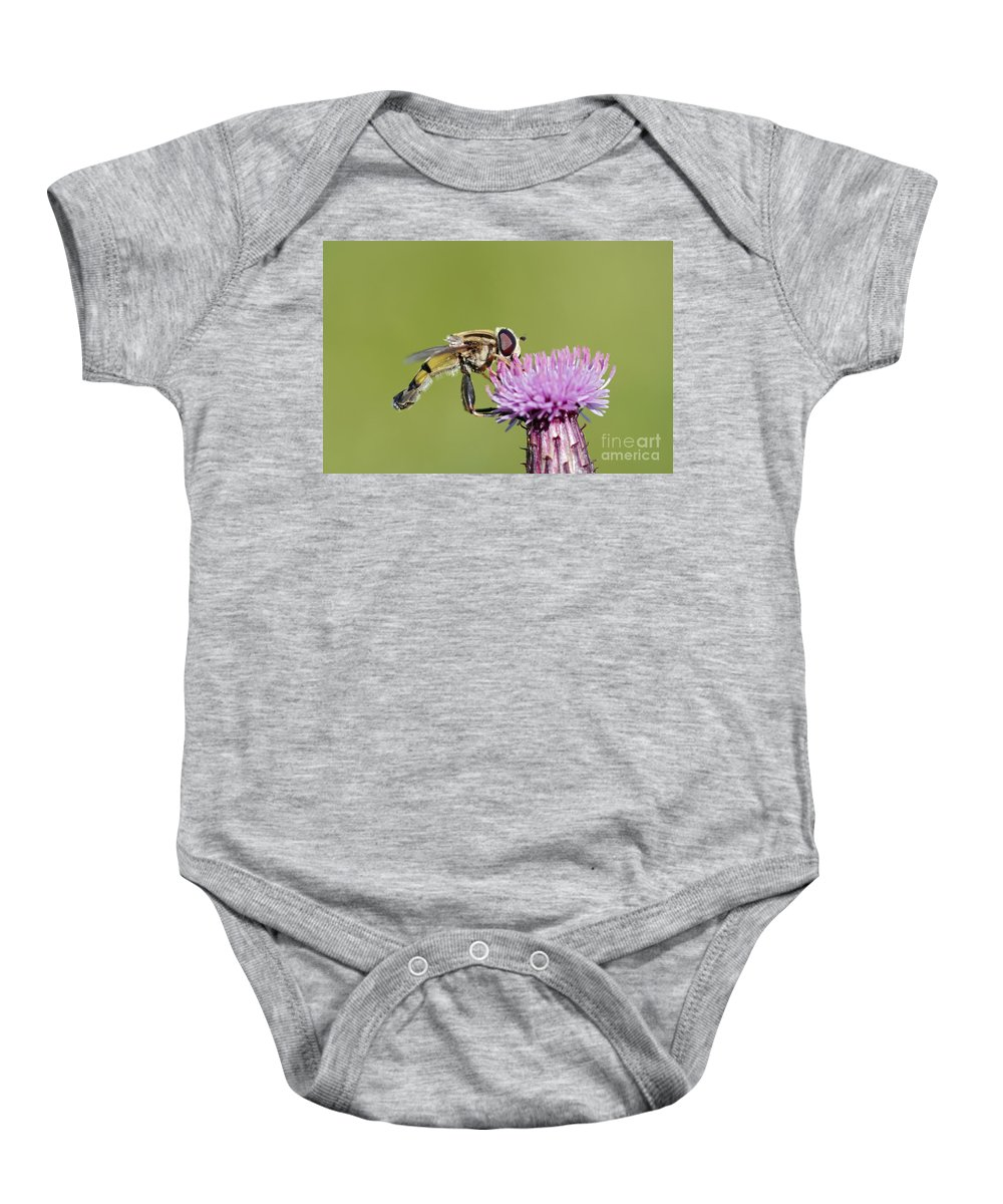 Insect Baby Onesie featuring the photograph In The Bloom by Michal Boubin