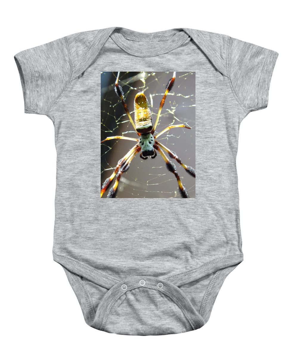 Spiders Baby Onesie featuring the photograph Invitation To Dinner by Karen Wiles