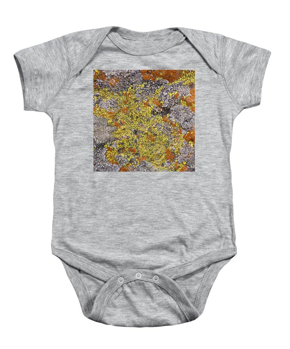 Lichen Baby Onesie featuring the photograph Lichens by Heidi Smith