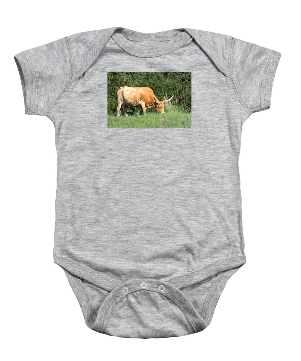 Longhorn Baby Onesie featuring the photograph Longhorn Cow by Karon Melillo DeVega
