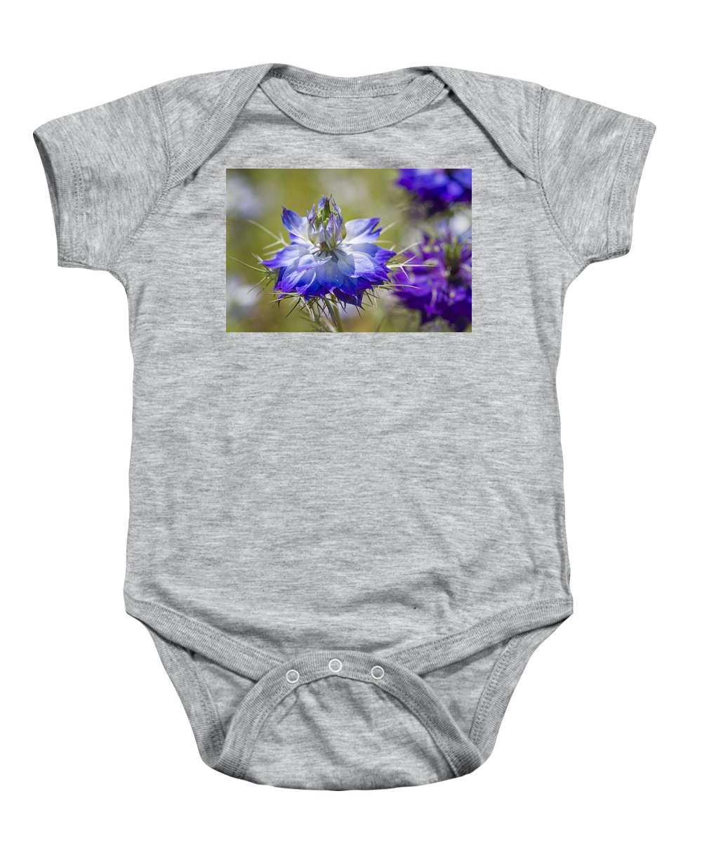 Nigella Baby Onesie featuring the photograph Love In The Mist - Nigella by Kathy Clark