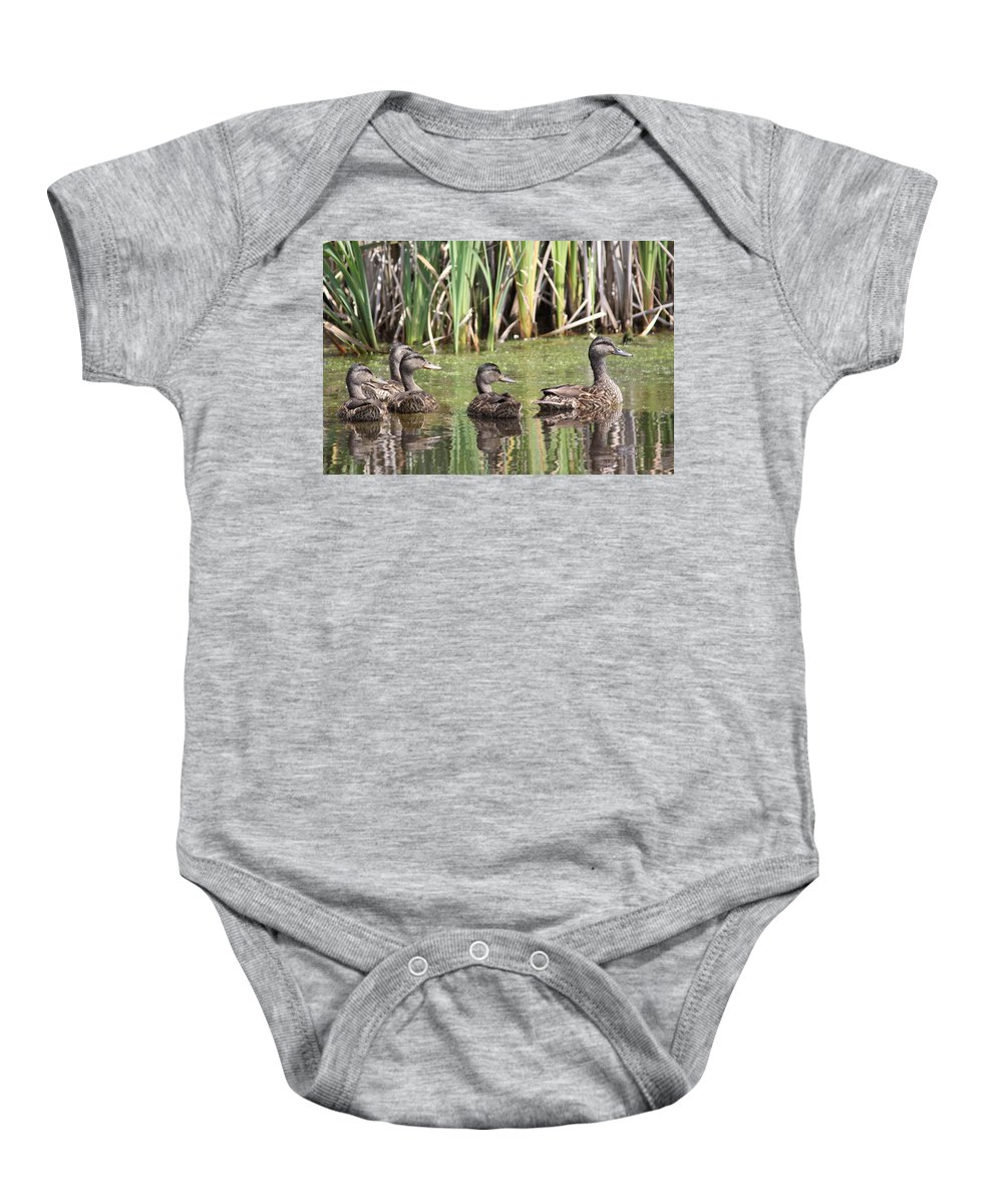 Mallards Baby Onesie featuring the photograph Mama And Babies by Travis Truelove