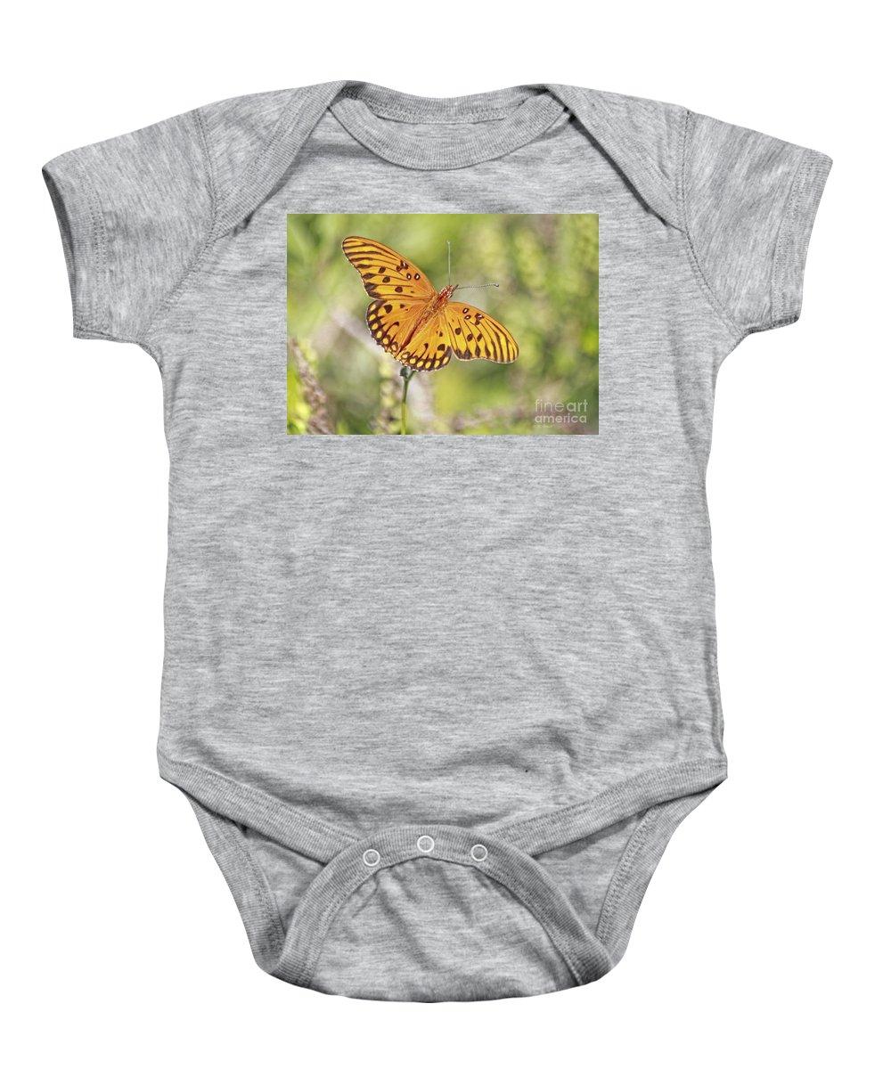 Butterfly Baby Onesie featuring the photograph Merritt Butterfly by Deborah Benoit