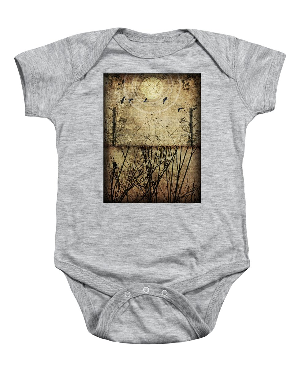 Art Baby Onesie featuring the photograph Migration by Jay Hooker