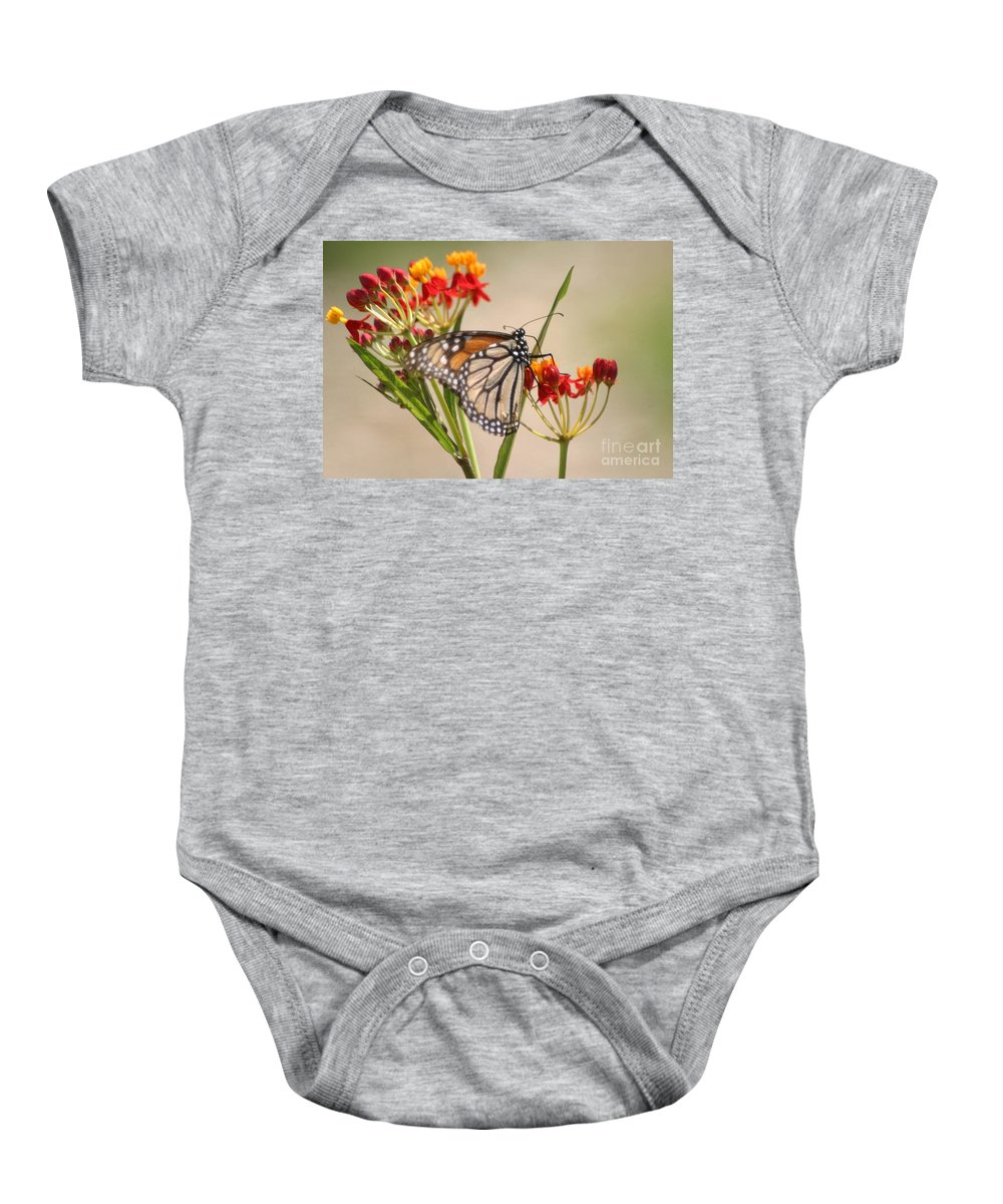 Butterfly Baby Onesie featuring the photograph Monarch Portrait by Living Color Photography Lorraine Lynch