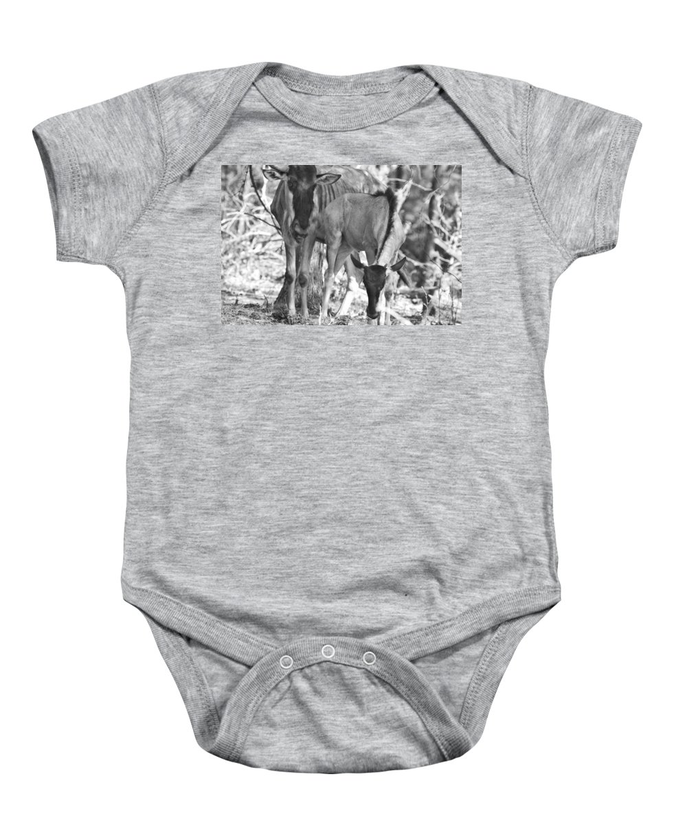 Blue Wildebeest Baby Onesie featuring the photograph Mother And Child V4 by Douglas Barnard