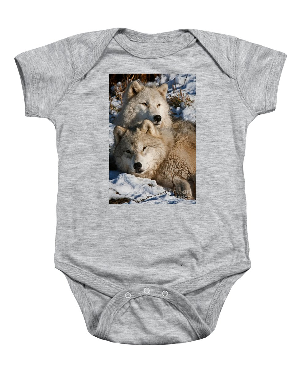 Michael Cummings Baby Onesie featuring the photograph Mother's Love by Michael Cummings