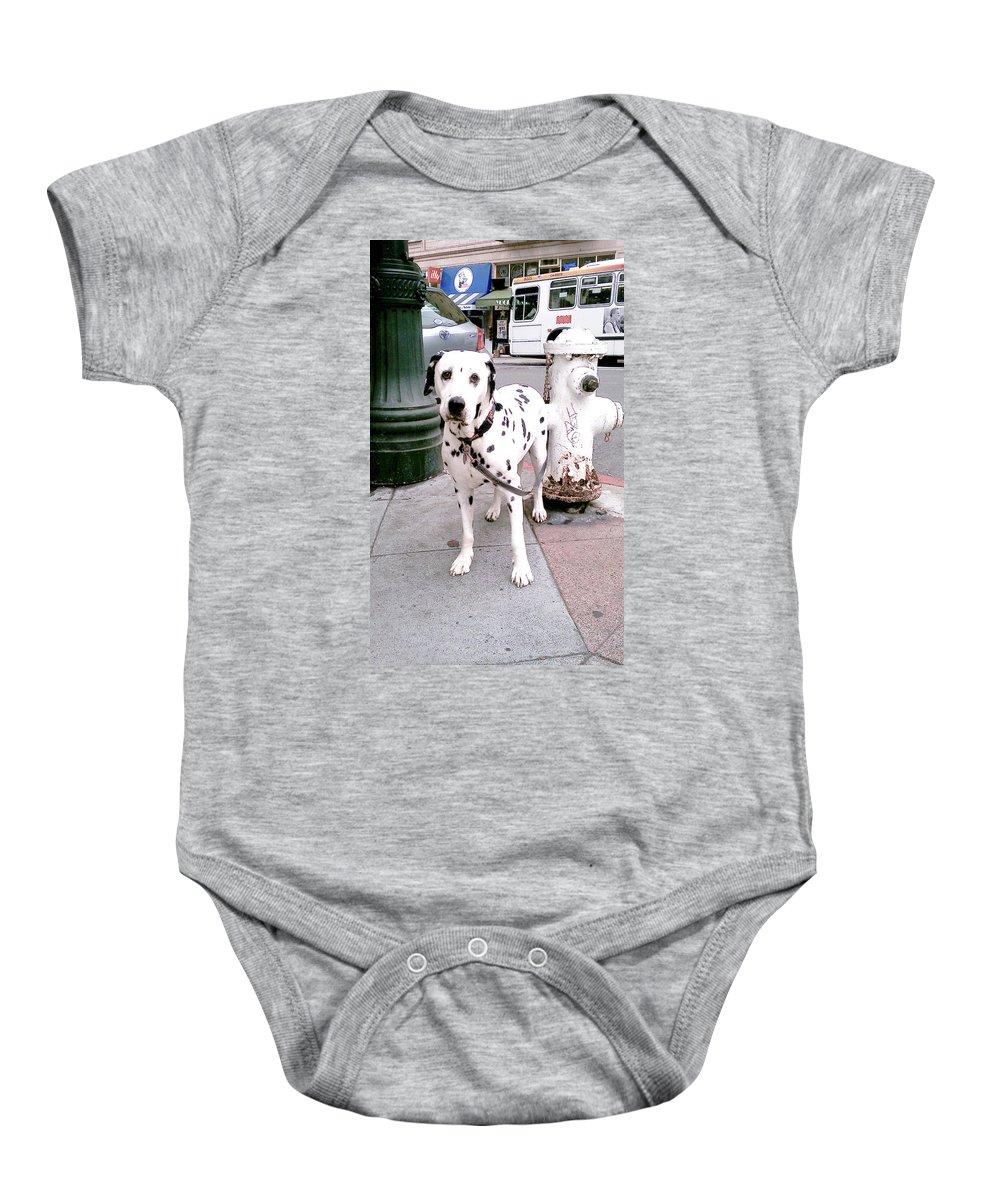 Moveonart! Global Gathering. -- Digital Photo On Daily Walk By Artist Jacob Kane -- Omnetra Baby Onesie featuring the digital art Moveonart Deardalmationfriend by Jacob Kanduch