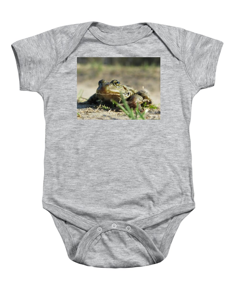 Frog Baby Onesie featuring the photograph Mr. Charming Eyes by Ausra Huntington nee Paulauskaite