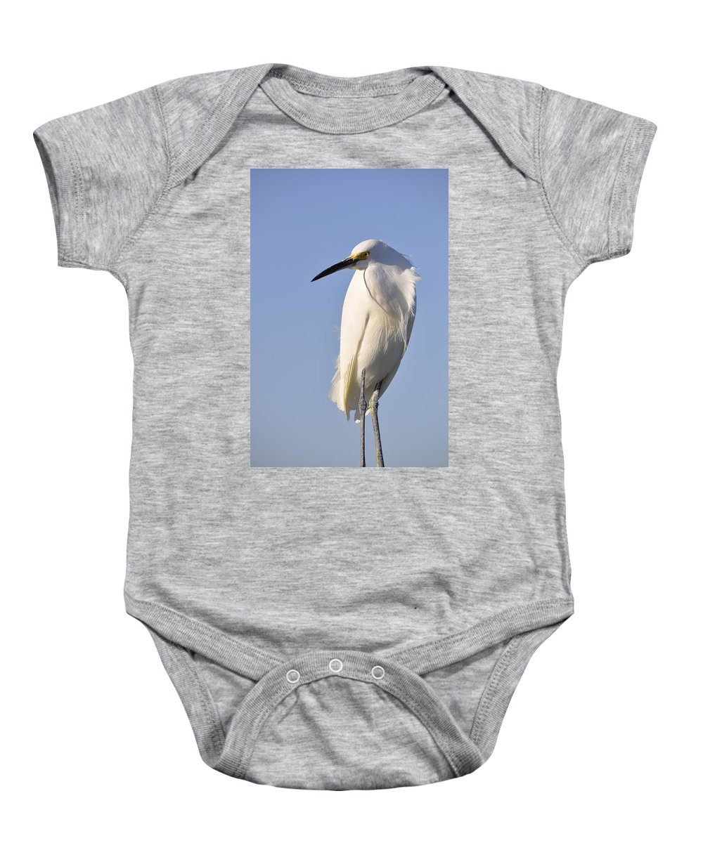 Snowy Egret Baby Onesie featuring the photograph Not Ruffled by Christine Stonebridge