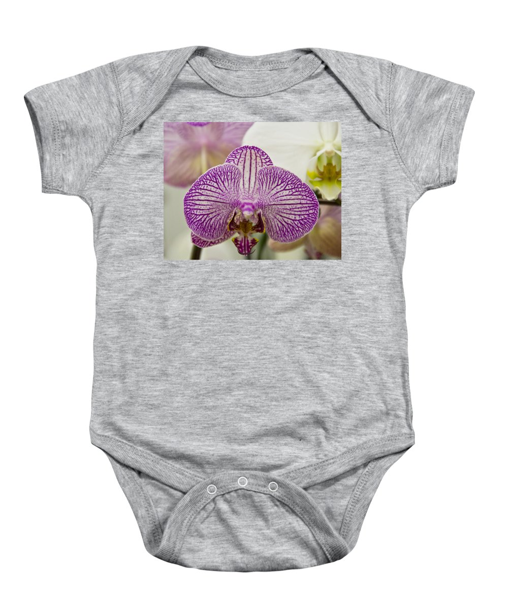 Exotic Baby Onesie featuring the photograph Orchid Originality by Angelina Vick