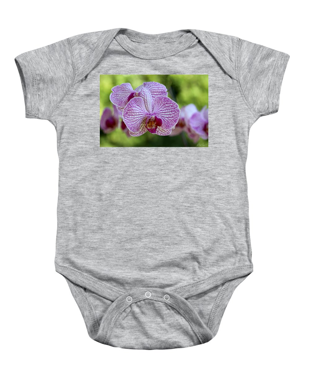 Orchid Baby Onesie featuring the photograph Orchids by Diana Haronis