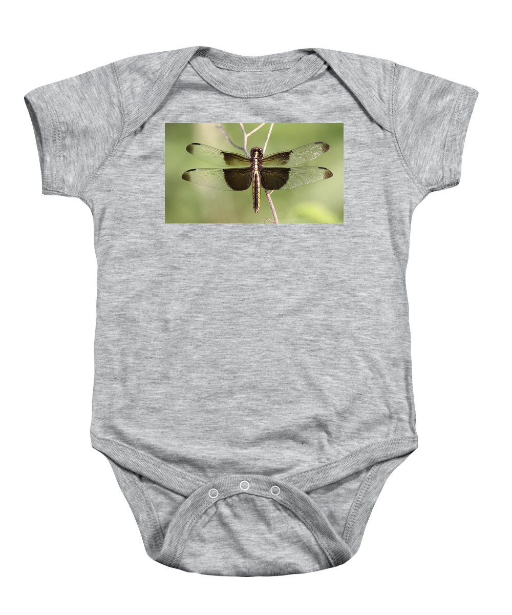 Baby Onesie featuring the photograph Outreach by Travis Truelove