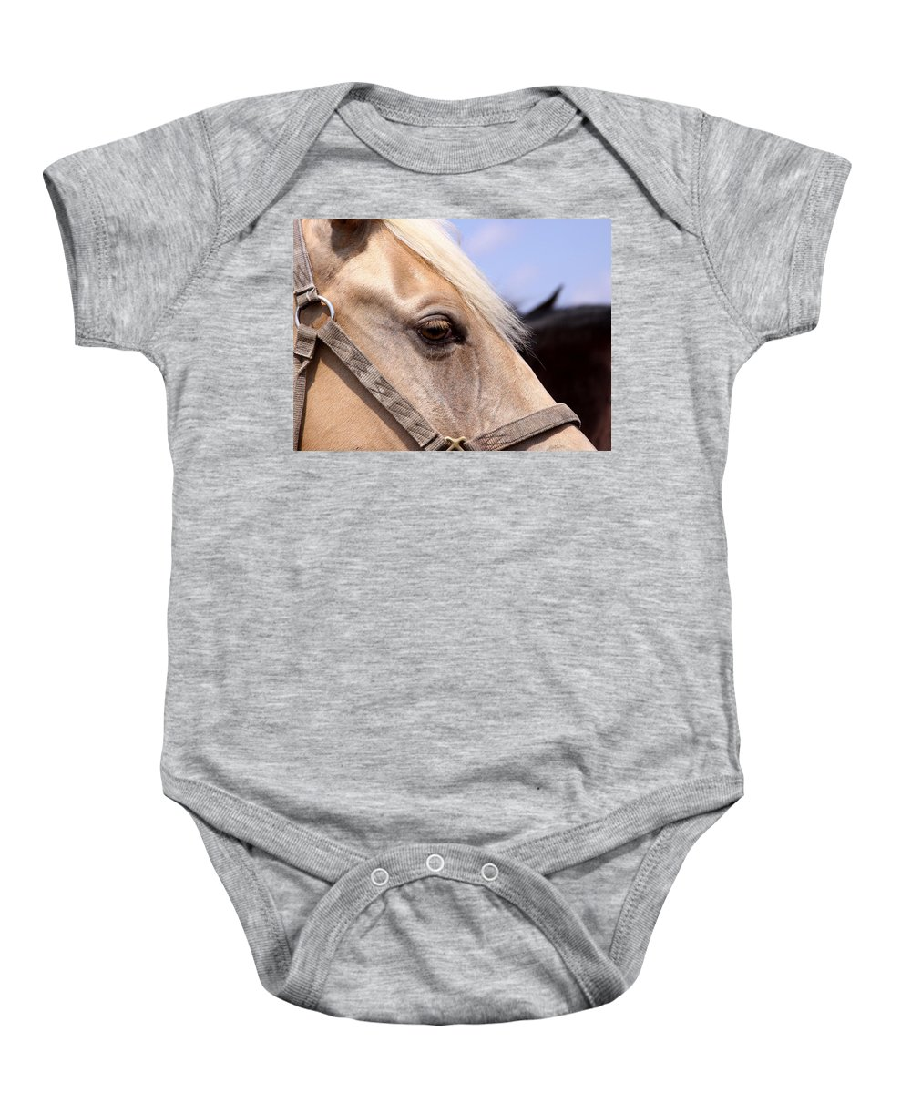 Horse Baby Onesie featuring the photograph Palomino At Benson by Travis Truelove