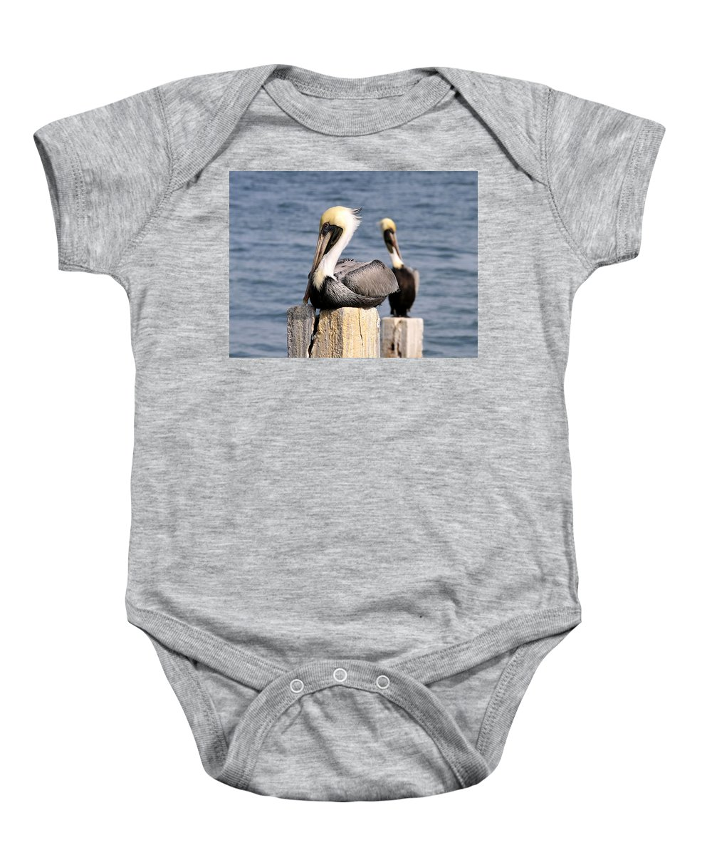 Wildlife Photography Baby Onesie featuring the photograph Pelican Pair by David Lee Thompson