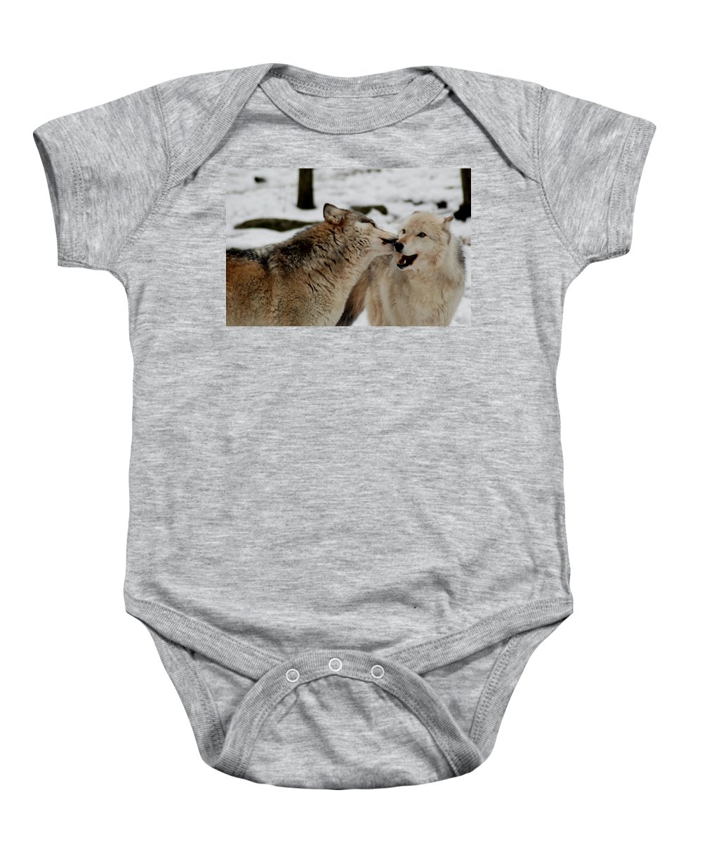 Wolf Baby Onesie featuring the photograph Playful Wolves by Richard Bryce and Family