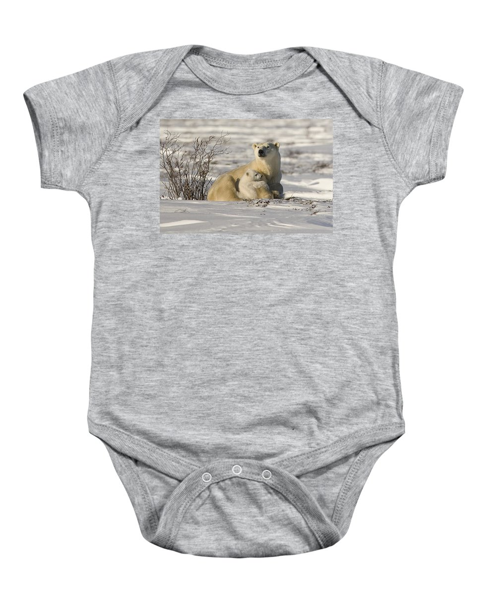 Bear Cub Baby Onesie featuring the photograph Polar Bear With Cub, Watchee by Robert Brown
