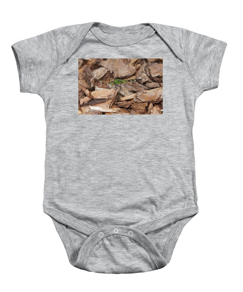 Dragonfly Baby Onesie featuring the photograph Profile Of Green Dragonfly by Megan Cohen