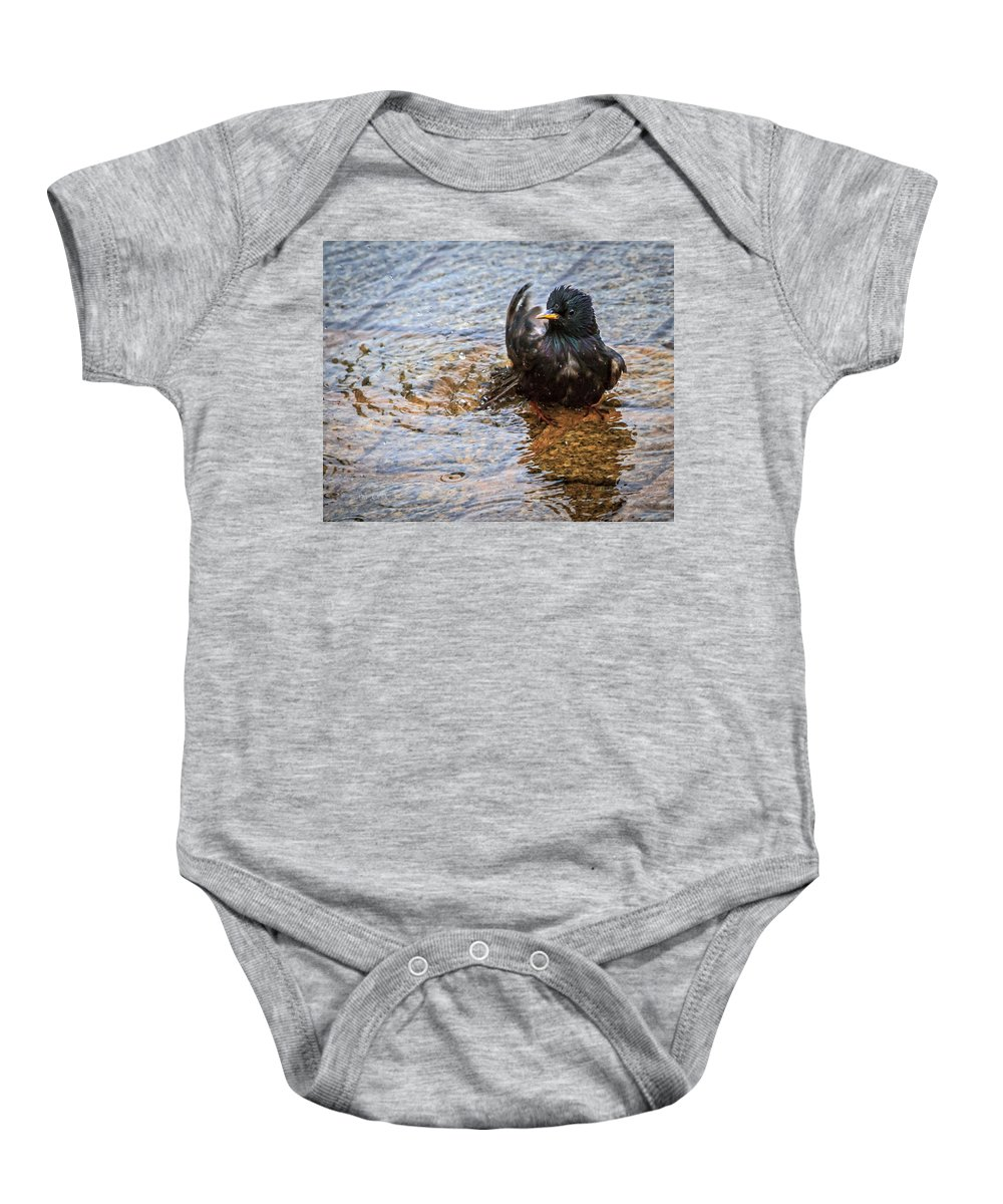 Starling Baby Onesie featuring the photograph Public Bathing by Bob Orsillo