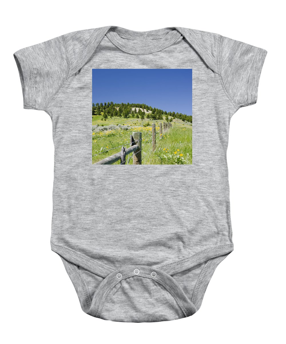 Americas Baby Onesie featuring the photograph Rangeland Wild Flowers by Roderick Bley