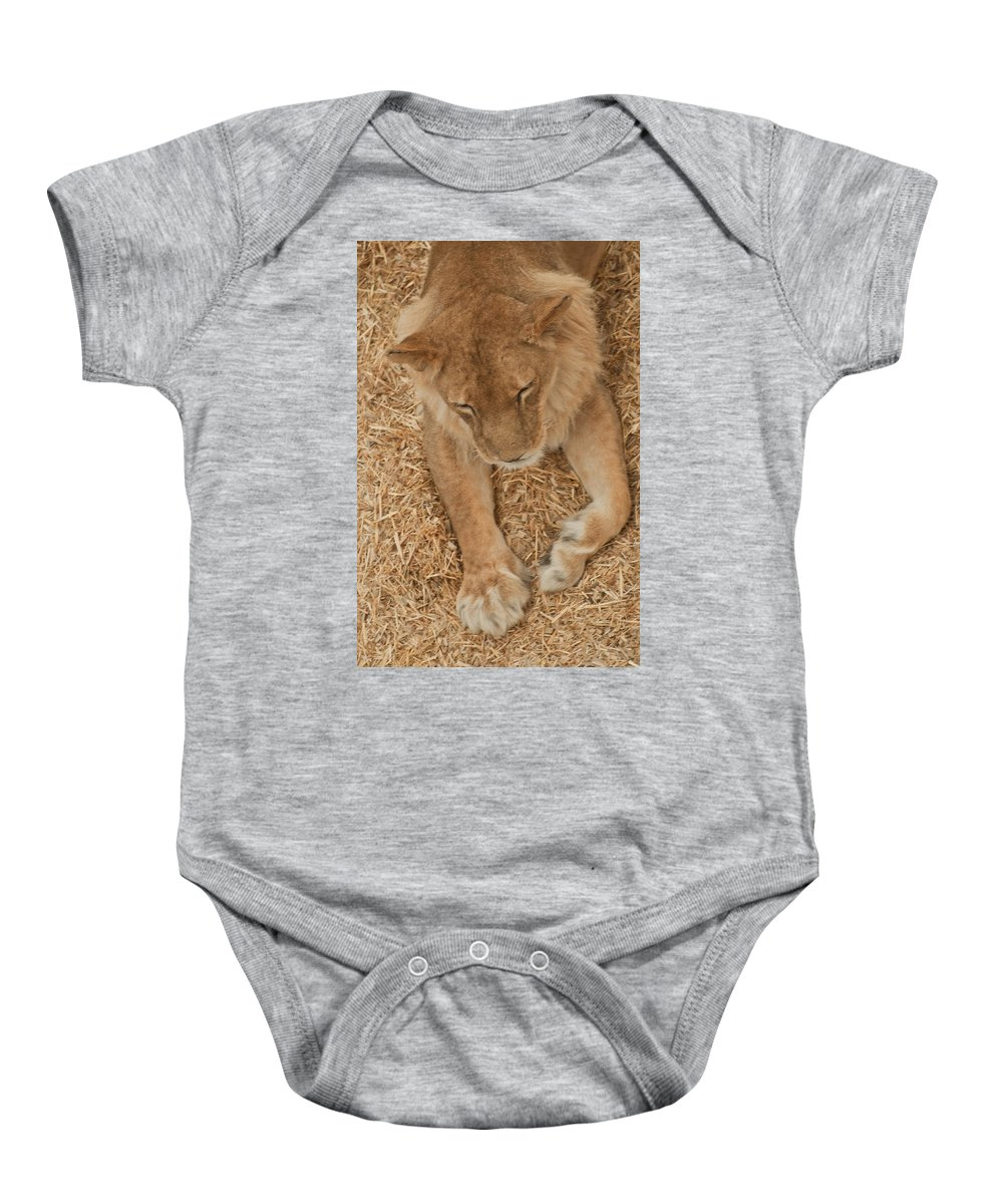 Wild Baby Onesie featuring the photograph Rescued by Colleen Coccia