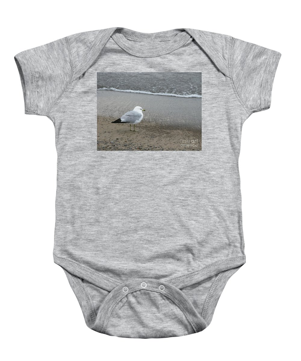 Ring-billed Gull Baby Onesie featuring the photograph Ring-billed Gull by Ann Horn