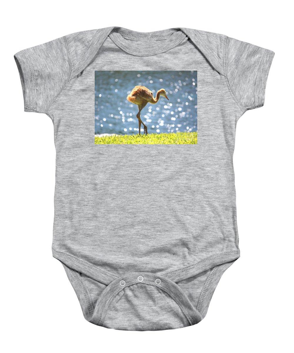 Sandhill Crane Baby Onesie featuring the photograph Sandhill Crane Daydreamer by Carol Groenen