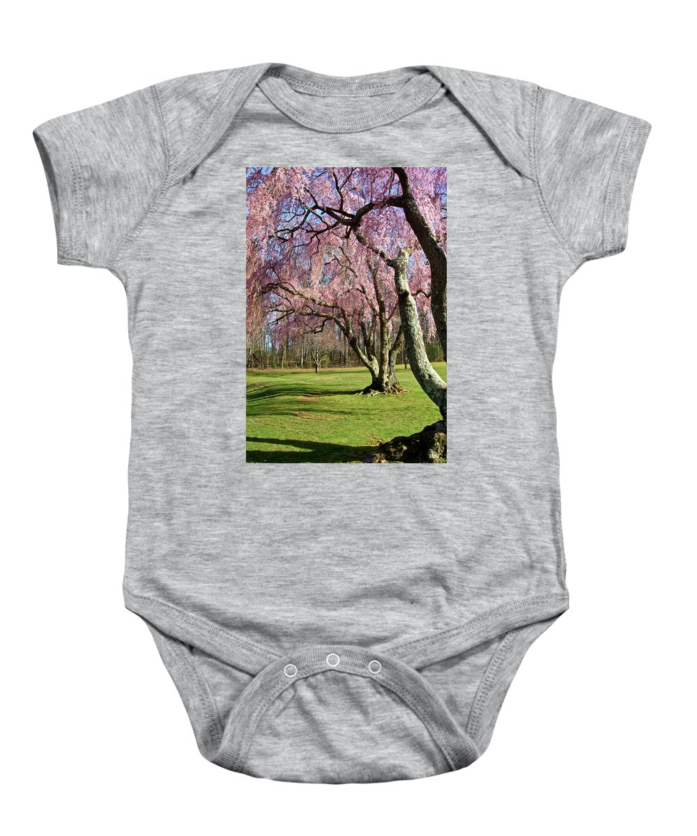 Park Landscape Baby Onesie featuring the photograph Shades Of Spring by Byron Varvarigos