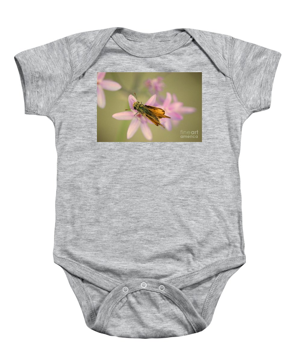 Skipper Butterfly Baby Onesie featuring the photograph Skipper Butterfly by Brooke Roby
