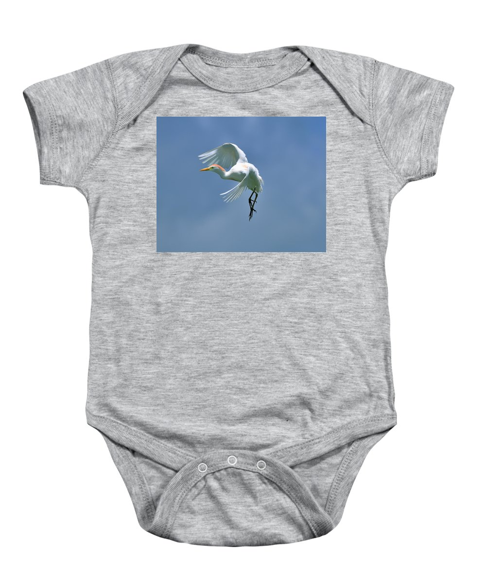 Cattle Erget Baby Onesie featuring the photograph Sky Dancing by Bill Dodsworth