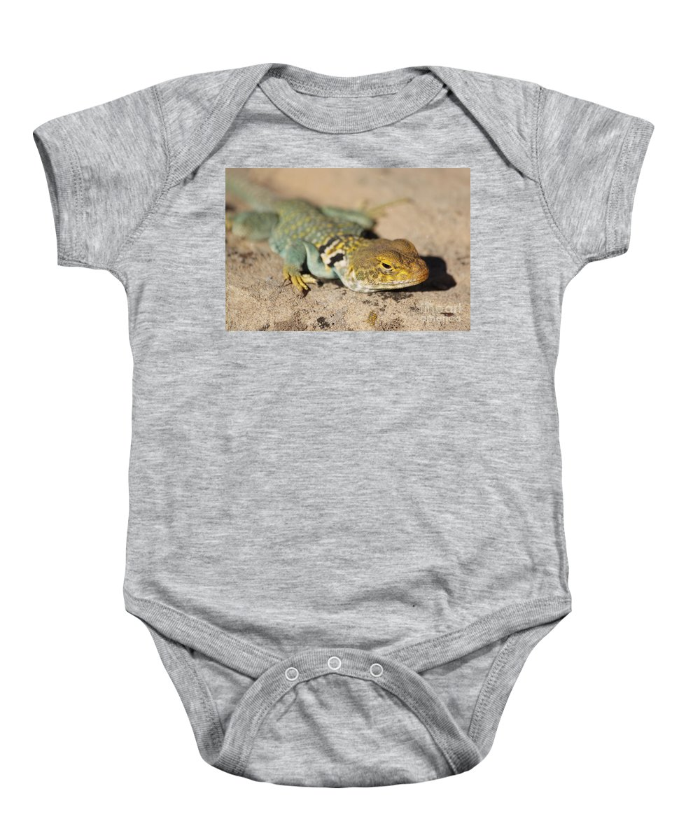 Collared Lizard Baby Onesie featuring the photograph Sneaky by Adam Jewell