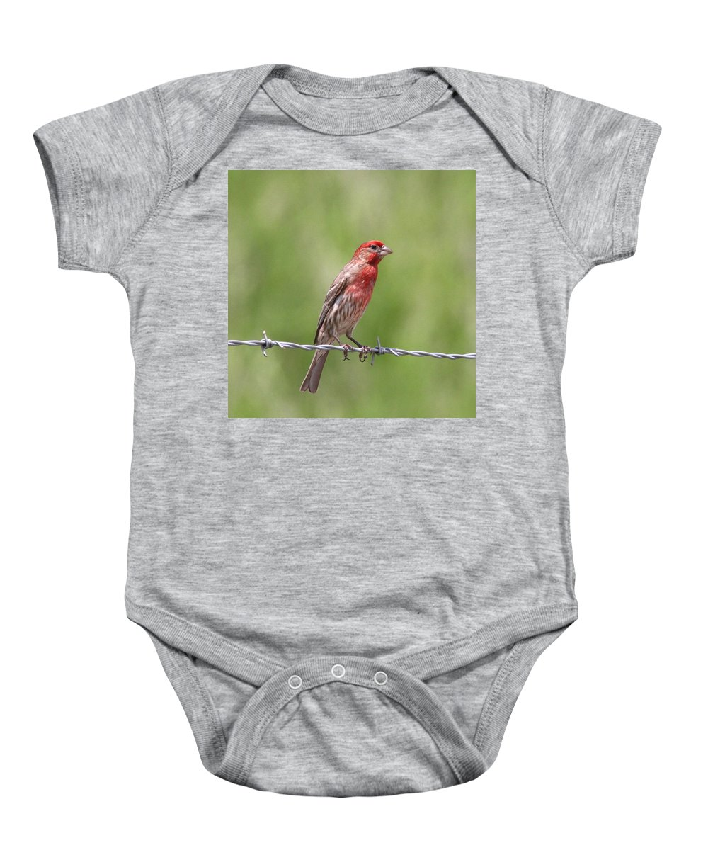 House Finch Baby Onesie featuring the photograph Speckled In Red by Travis Truelove