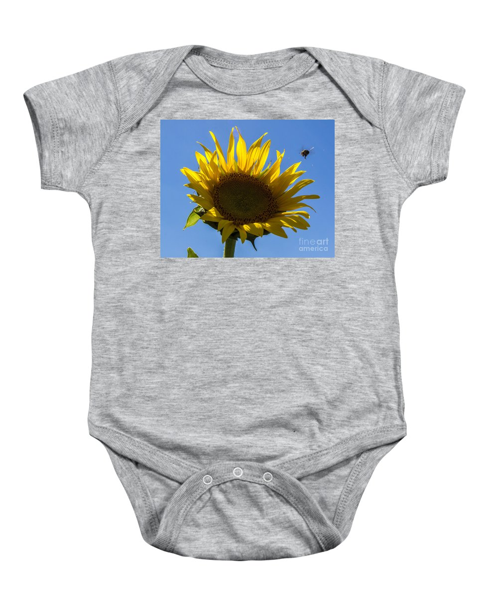 Sunflower Baby Onesie featuring the photograph Sunflower For Snack by Darleen Stry