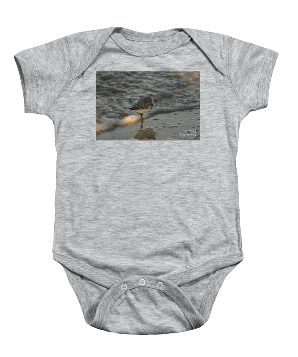 Seabird Baby Onesie featuring the photograph Sunset Reflections by Tim Mulina