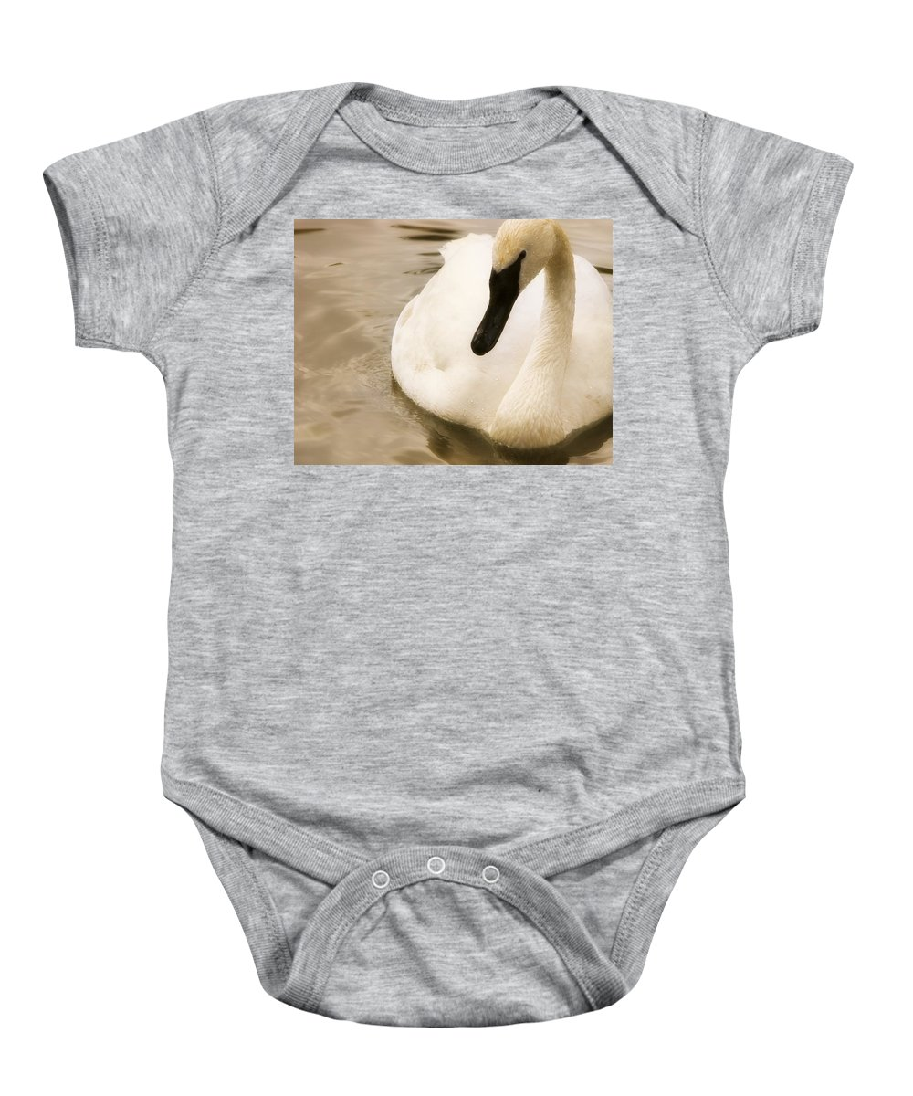 Animals Baby Onesie featuring the photograph Swan by Chris Knorr
