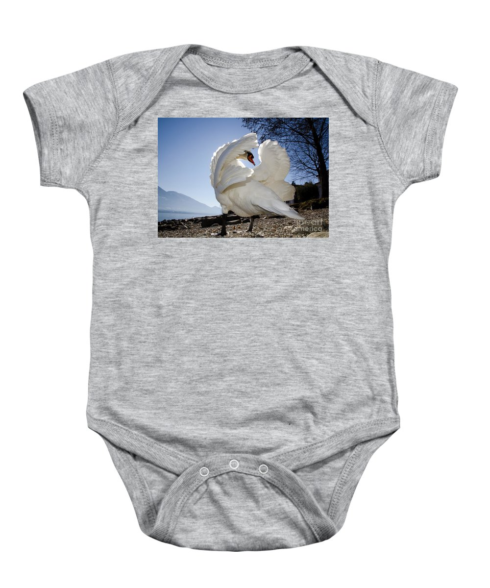 Swan Baby Onesie featuring the photograph Swan In Backlight by Mats Silvan
