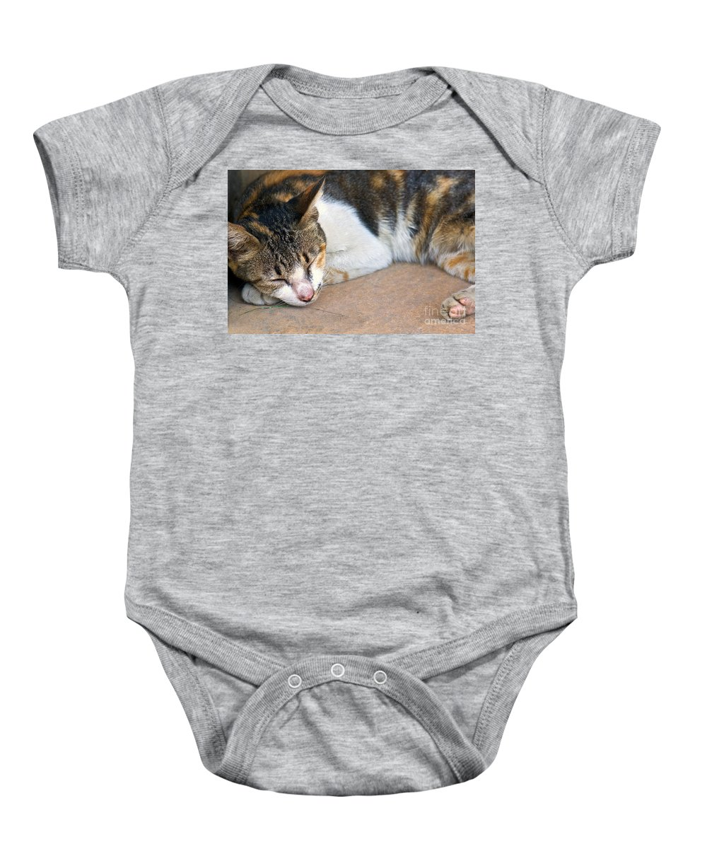 Cat Baby Onesie featuring the photograph Taking Nap by Charuhas Images