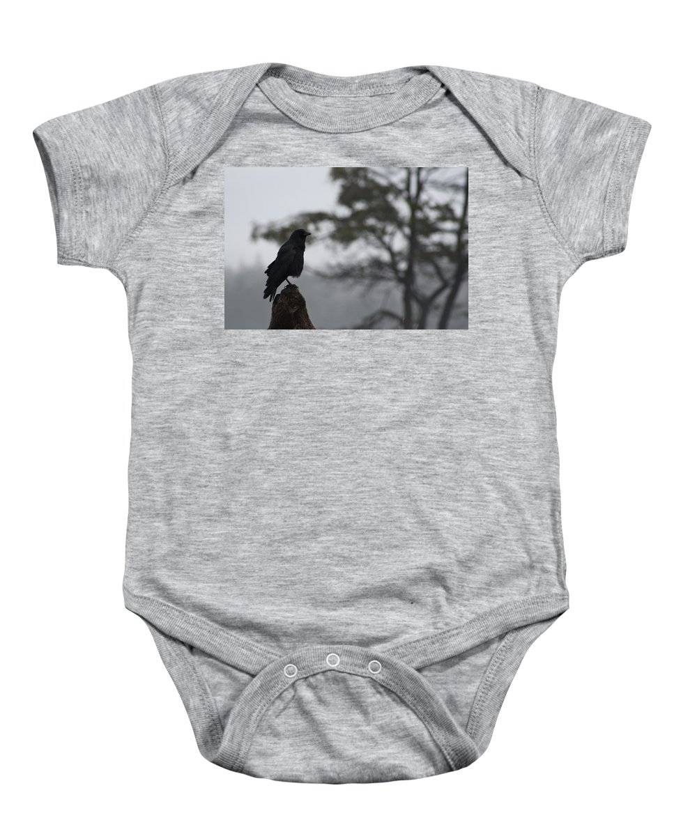 Raven Baby Onesie featuring the photograph The Bachelor by Cathie Douglas