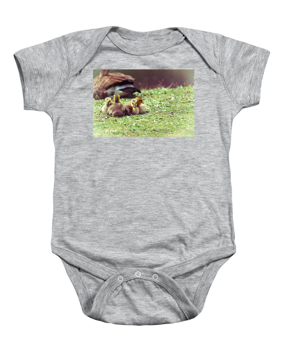 Geeselings Baby Onesie featuring the photograph The First Family by Karol Livote