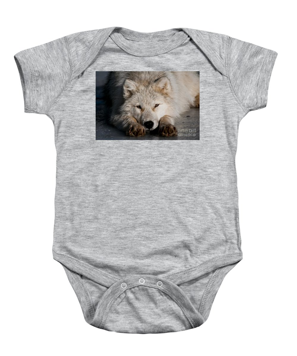 Michael Cummings Baby Onesie featuring the photograph Time To Chill by Michael Cummings