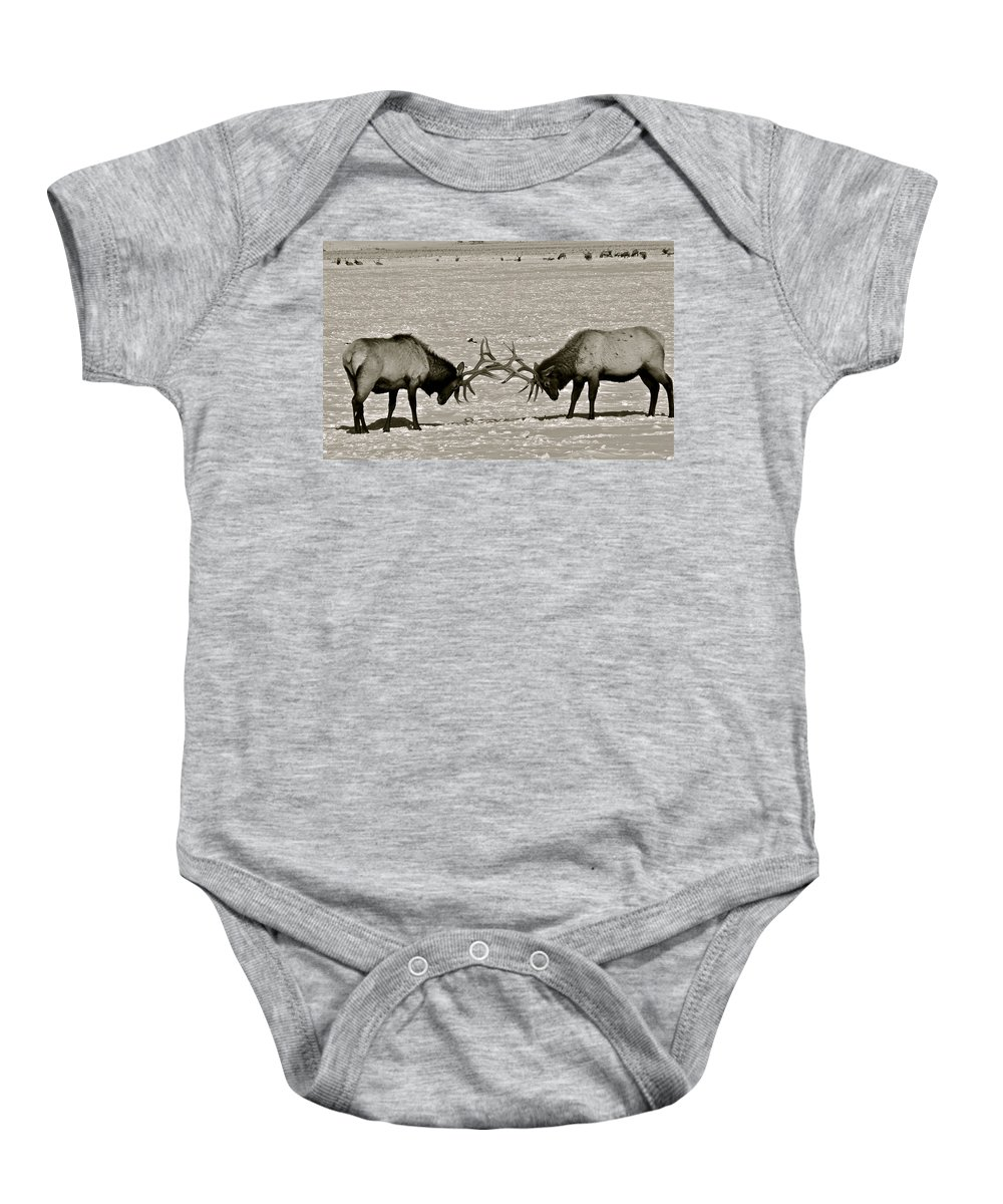 Elk Baby Onesie featuring the photograph Touche by Eric Tressler