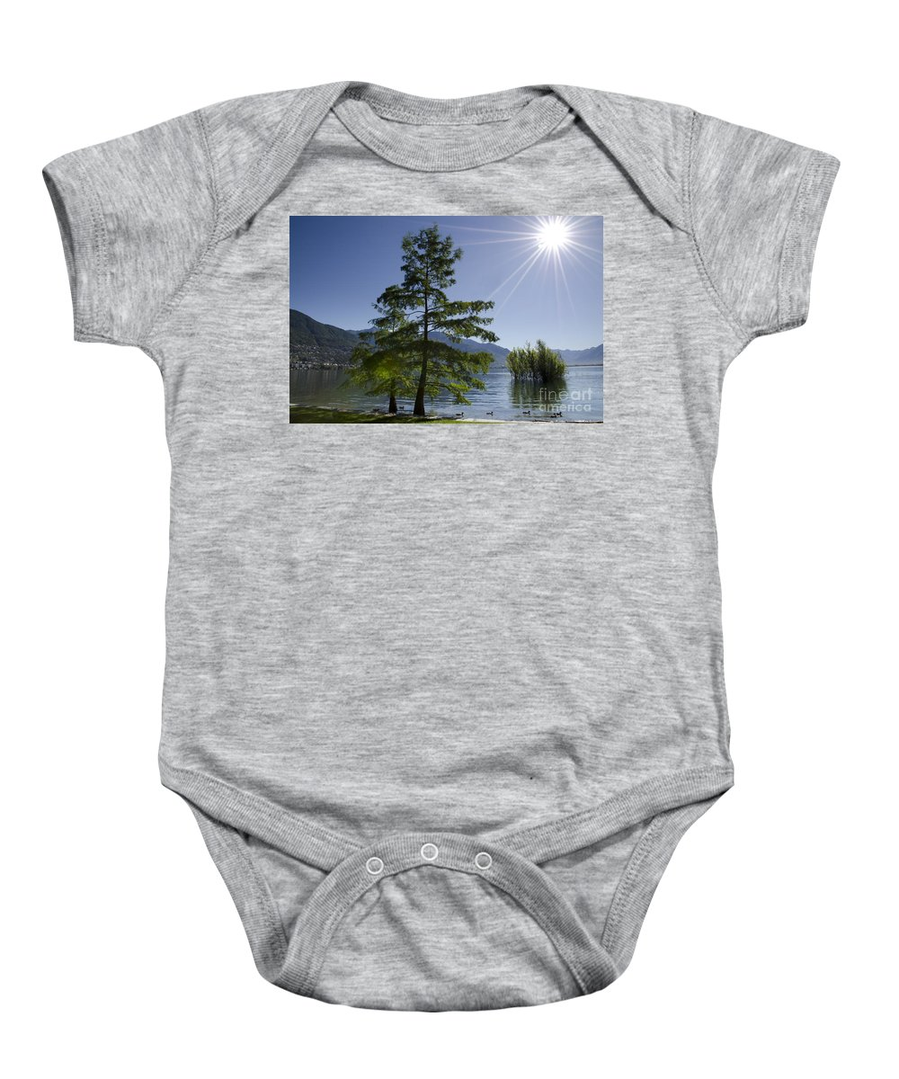 Trees Baby Onesie featuring the photograph Trees With Sunbeam by Mats Silvan