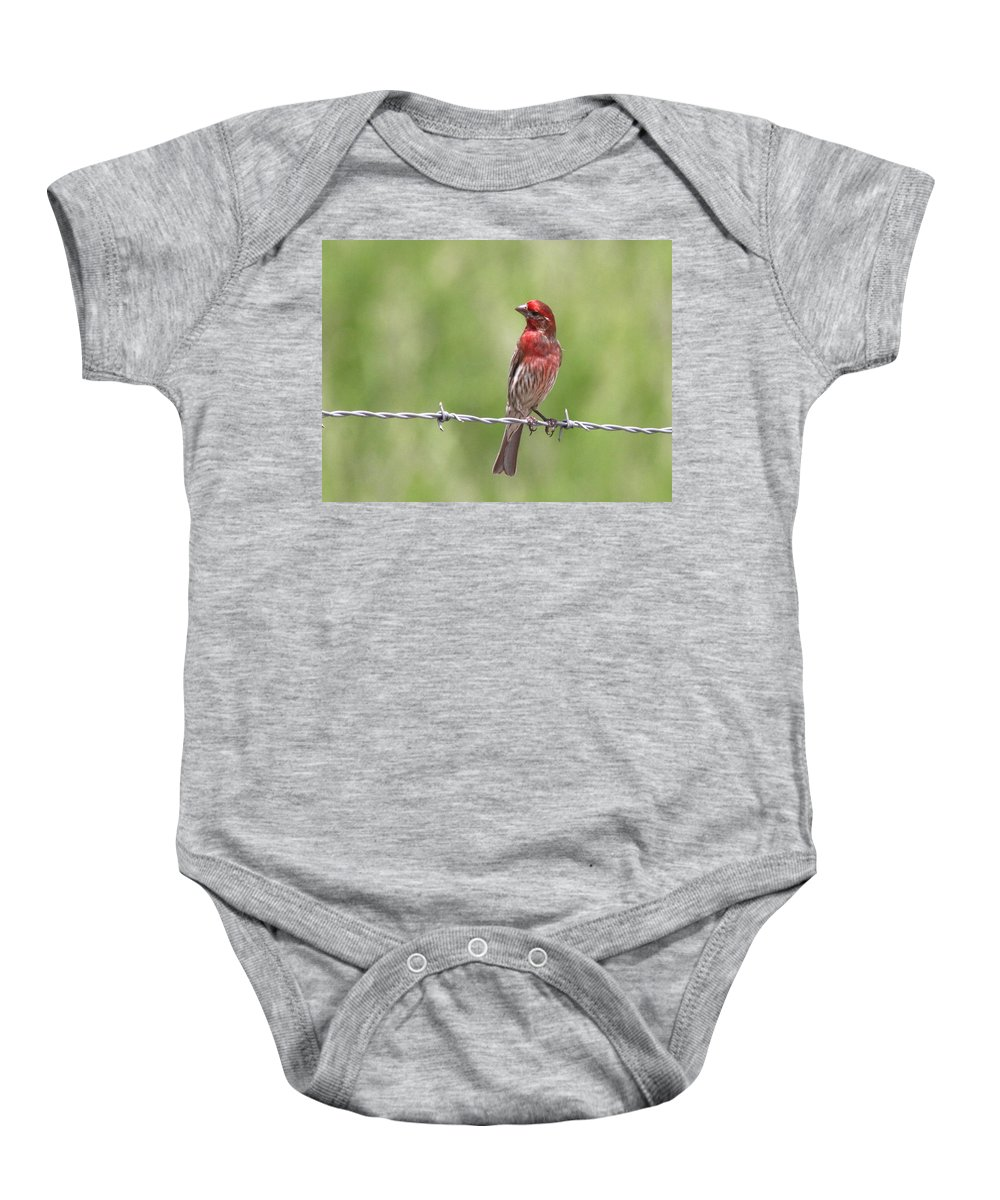 Baby Onesie featuring the photograph Twisted by Travis Truelove
