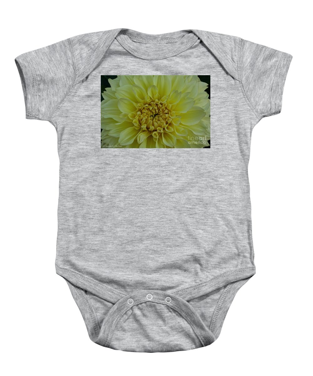Landscape Baby Onesie featuring the photograph Vivid Yellow Dahlia by Susan Herber
