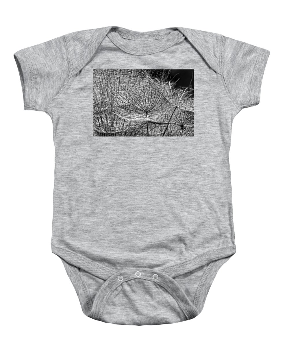Asteraceae Baby Onesie featuring the photograph Weed Wandering Monochrome by Steve Harrington
